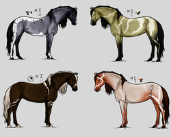 Horse Adoptables Set 3 [CLOSED] by CoutureEquineDesigns