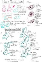 Rabbit Drawing tutorial pt1 - Characteristics by LadyFiszi