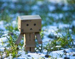 Danbo's first snow by Pamba