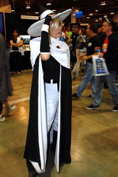 CCEE 2011 Saturday 016 by DemonicClone