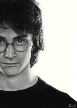 Potter by Charlzton