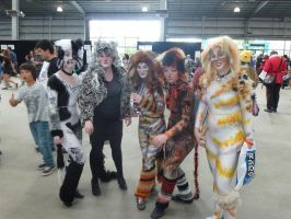 Supanova 2012 - CATS The Musical by nkbswe5