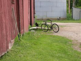Country Cliche II by dhunley