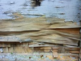 Old plywood with cracked paint by Indeed-Aldiss