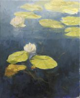 Water-lilies by angrymikko