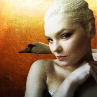 Lady and the Swan by BeautifulBizarreMag