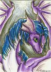 ACEO Trade: Dragea by Ember-Eyes
