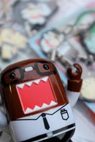Domo swag by PiliBilli