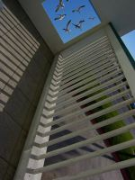CLIMB THE LADDER by CorazondeDios