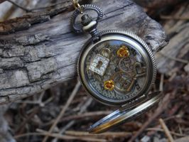 Steampunk pocket watch necklace II by Hiddendemon-666