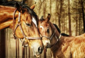 Mare and Foal by Shawna Mac by ShawnaMac