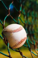 Baseball in fence by fotogrph