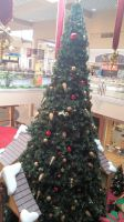 2014 Superstition Springs Santa Claus Station 10 by BigMac1212