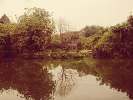 Nature Reflection by SaRaH-22