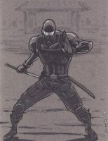 Snake Eyes Gray by jamesq