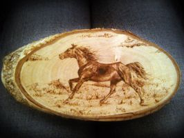 Horse pyrography by FizikArt