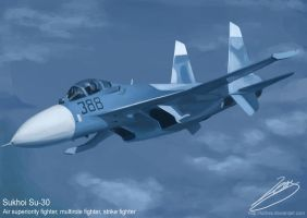 Sukhoi Su-30 by Luches