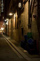 Evening Alley by viclei