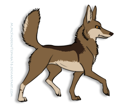 Brave little coyote by Tephra76