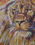 Lion by Abatwa-Oolie