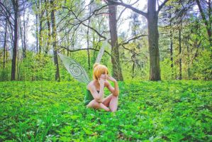 Tinker Bell cosplay 6 by Hanny-Senpai