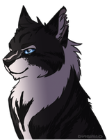 WARRIORS: Hawkfrost by diabllllo