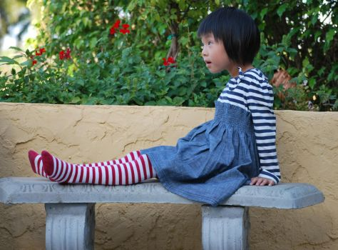 Striped Stockings 8 by SBG-CrewStock