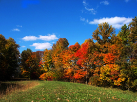 A Favorite Fall View 2 by wildwanderingirl