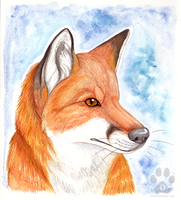 Red Fox by Kitsune--Rin