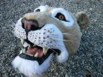 lion head by LilleahWest