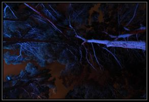 Blue Night IV by lumiere81