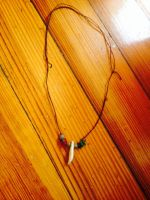 $8: Single coyote tooth necklace by MagicallyCapricious