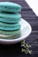 French Macarons 4 by laurenjacob
