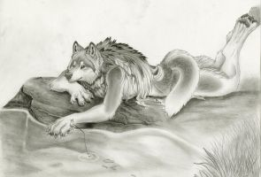 Fishing by Timber-Wolf-Spirit