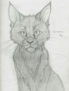 Crowpaw of WindClan by alvringer