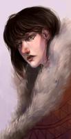 Fur coat by EmilyWalus