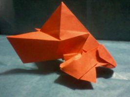 """Goldfish """"Chouer No. 9 by SsIGeS7"""