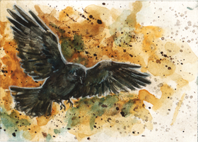 aceo flight (for jennka) by kailavmp