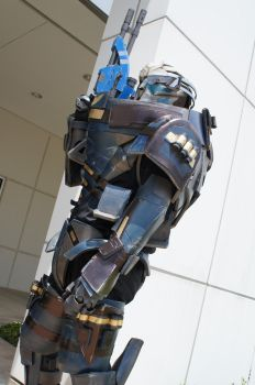 Garrus- Stand Tall by HoiHoiSan