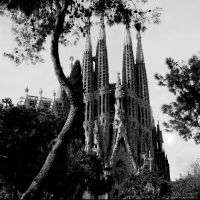 Sagrada Familia by MilenaT
