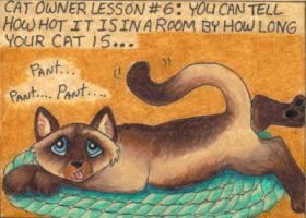 Cat Owner Lesson 6 - Art Card by stephanielynn