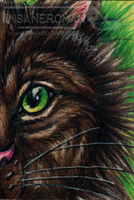 Cat ACEO Commission by InsaneRoman