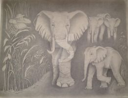 Elephants by SketchyImages