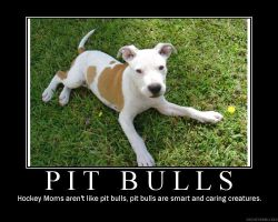 Pit bull by deathstrikesquirrel