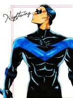 Nightwing by KHchick101