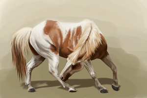 Painted myself a Paint Horse by apfelgriebs