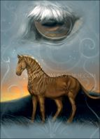 Quagga Card by howlinghorse