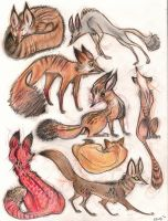 Fox Things by ELIOLI