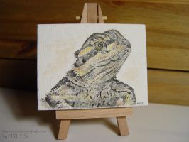Mini Beardie Canvas by HRLSS-GeckoTea