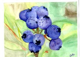 Blueberries by YourConceptArtist